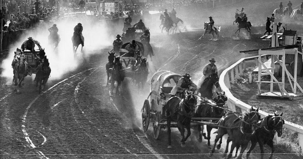 Chuckwagon Race Calgary Exhibition And Stampede Calgary