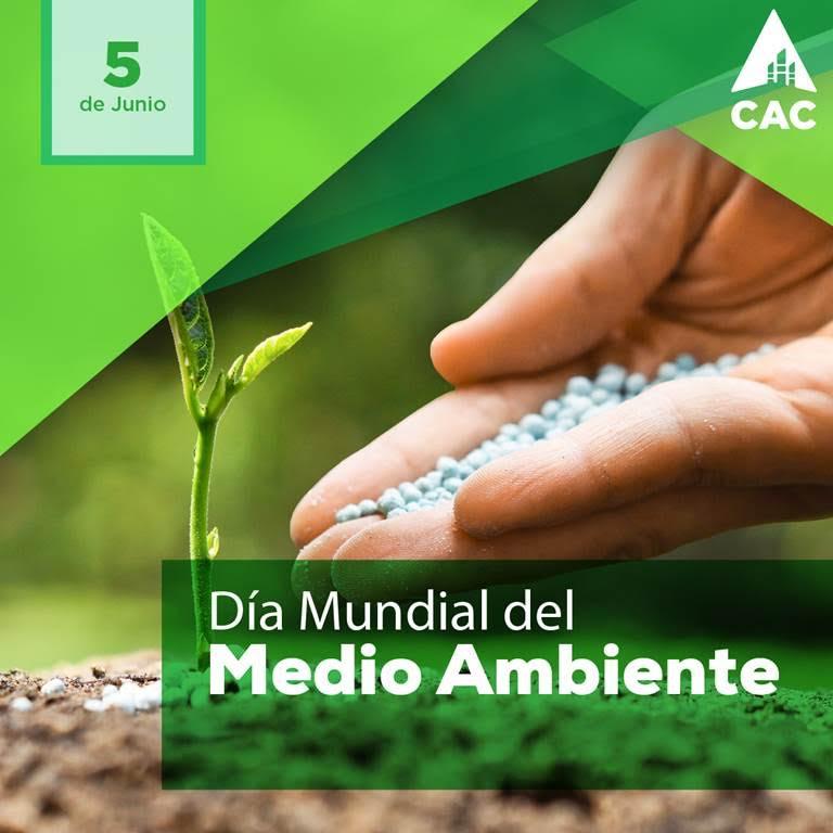 1 de 161   Día Mundial del Medio Ambiente