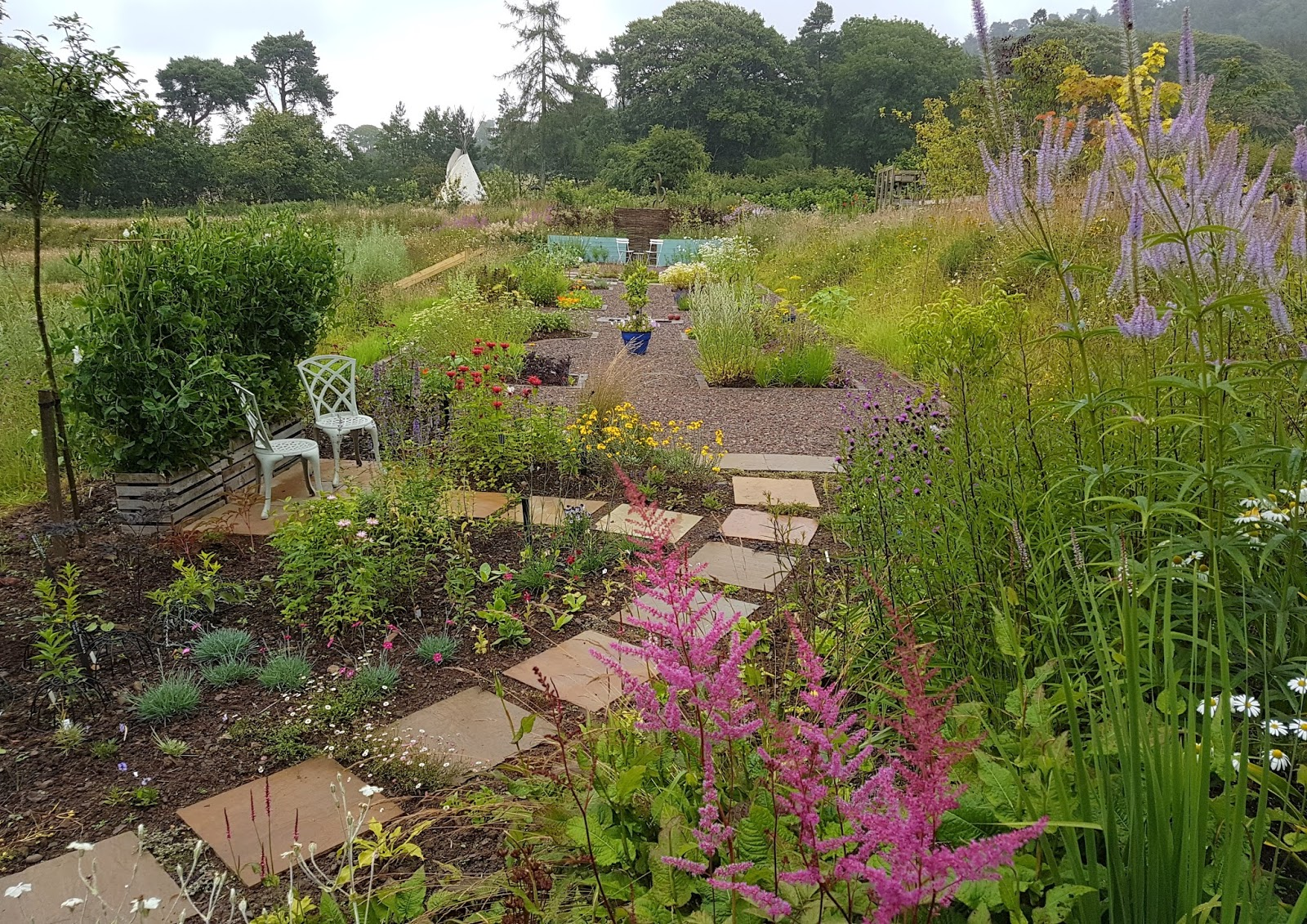The Scented Garden And Herb Garden August 2017