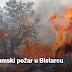 Ugašen šumski požar u Bistarcu