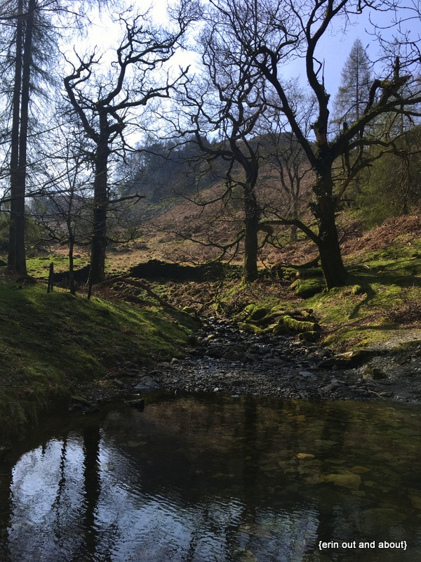 {ErinOutandAbout} Lake District