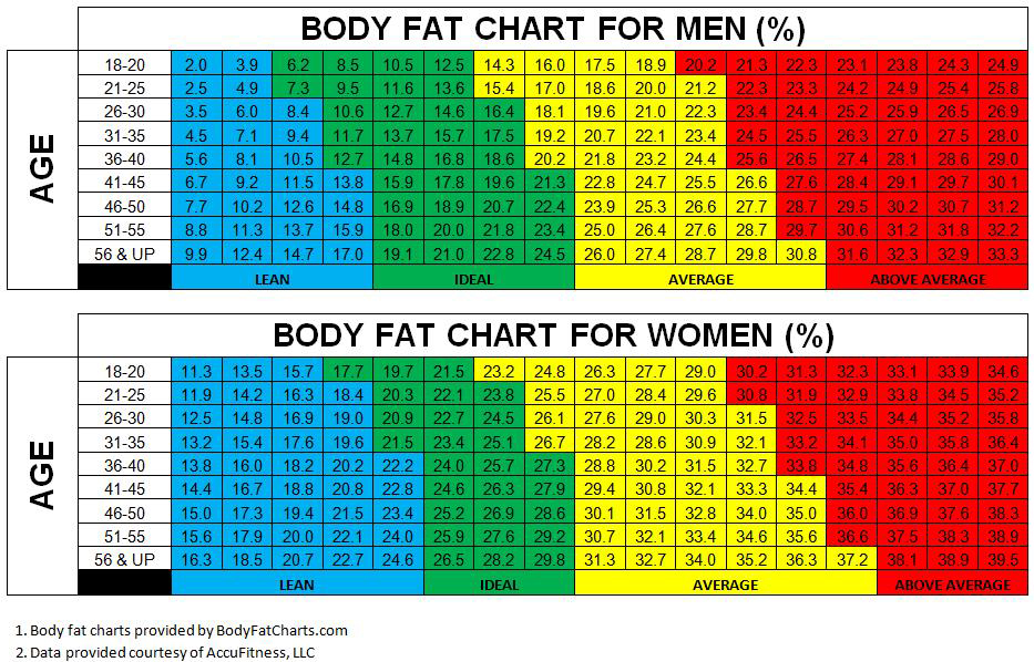what is a healthy body fat percentage for my age