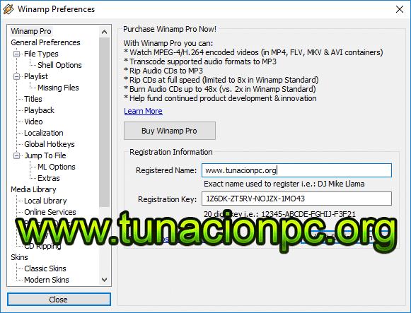 Winamp Pro, Poderoso Reproductor