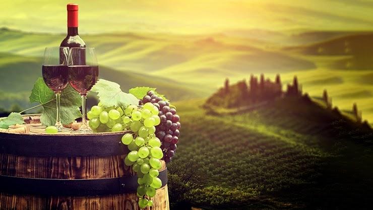 Итальянские виноделы терпят убытки