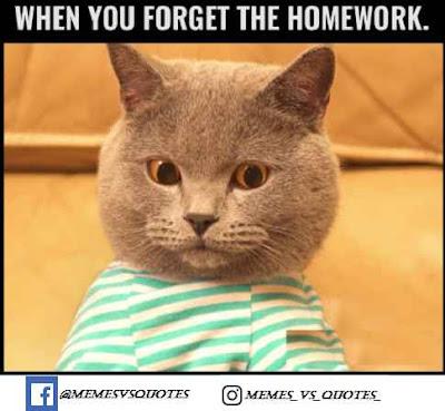 Forgot the homework