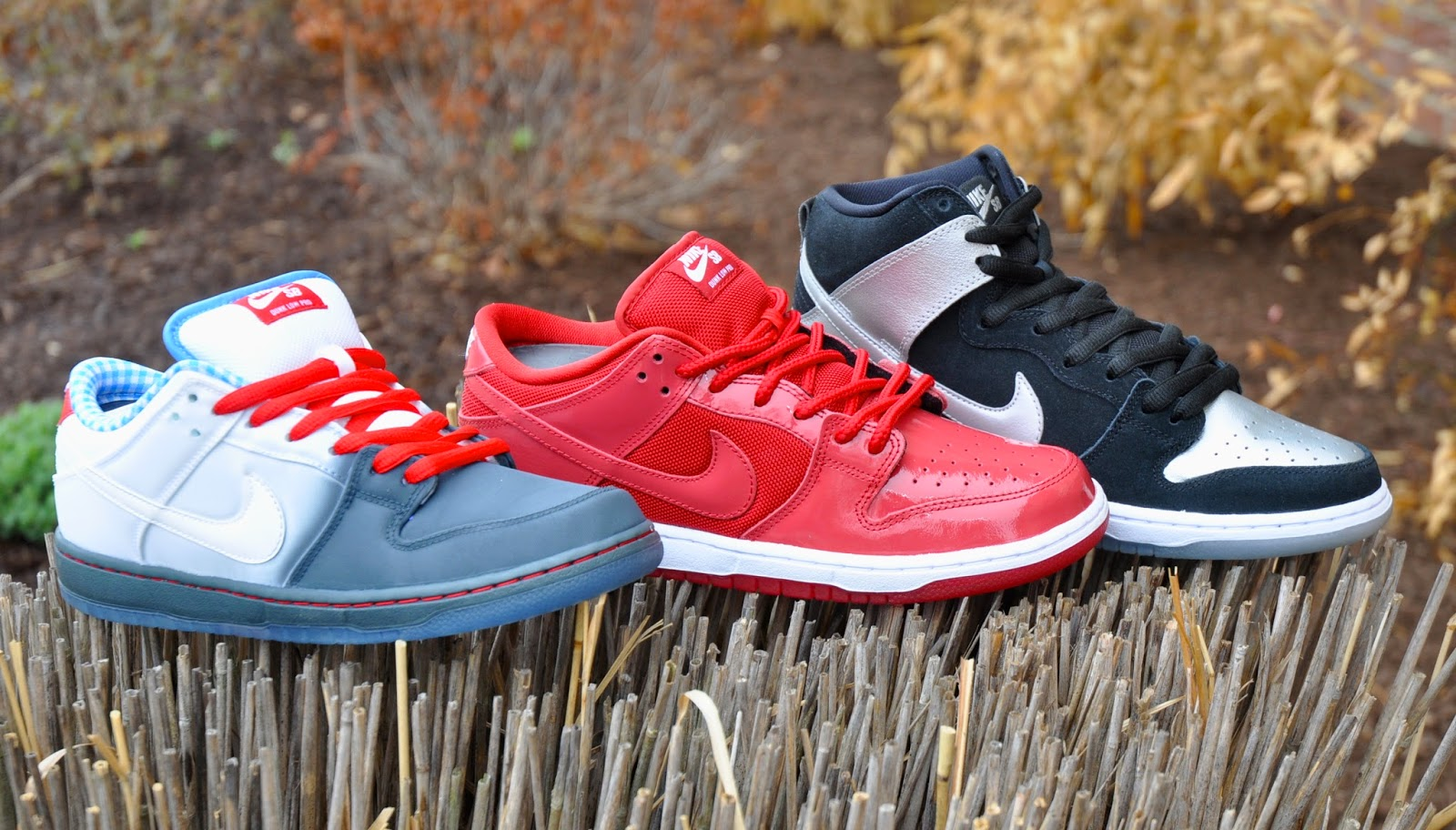 e489dfa90c05 Alpine Ski Shop Daily Drops  The Wizard of Oz Pack from Nike SB