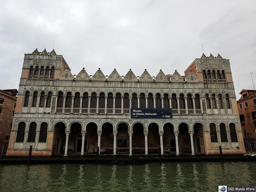 Museu de História Natural - Vaporetto em Veneza: como se locomover em Veneza