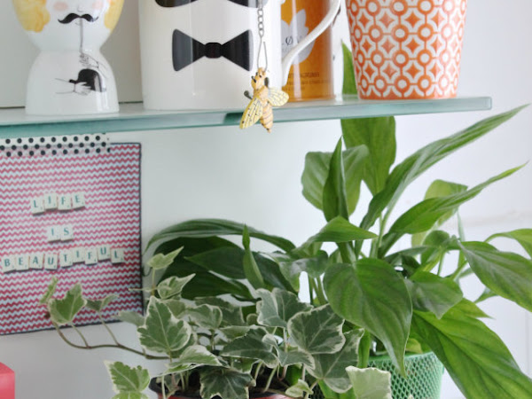 Urban Jungle Bloggers: Spice Up Your Kitchen