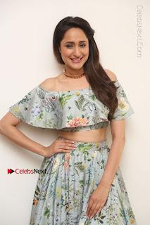 Actress Pragya Jaiswal Stills in Floral Dress at turodu Interview  0095.JPG