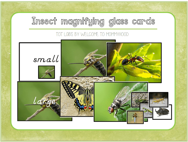 Our Montessori Spring:insect magnifying glass cards by Welcome to Mommyhood #montessori, #montessoriactivities, #insects, #springactivities, #preschoolactivities