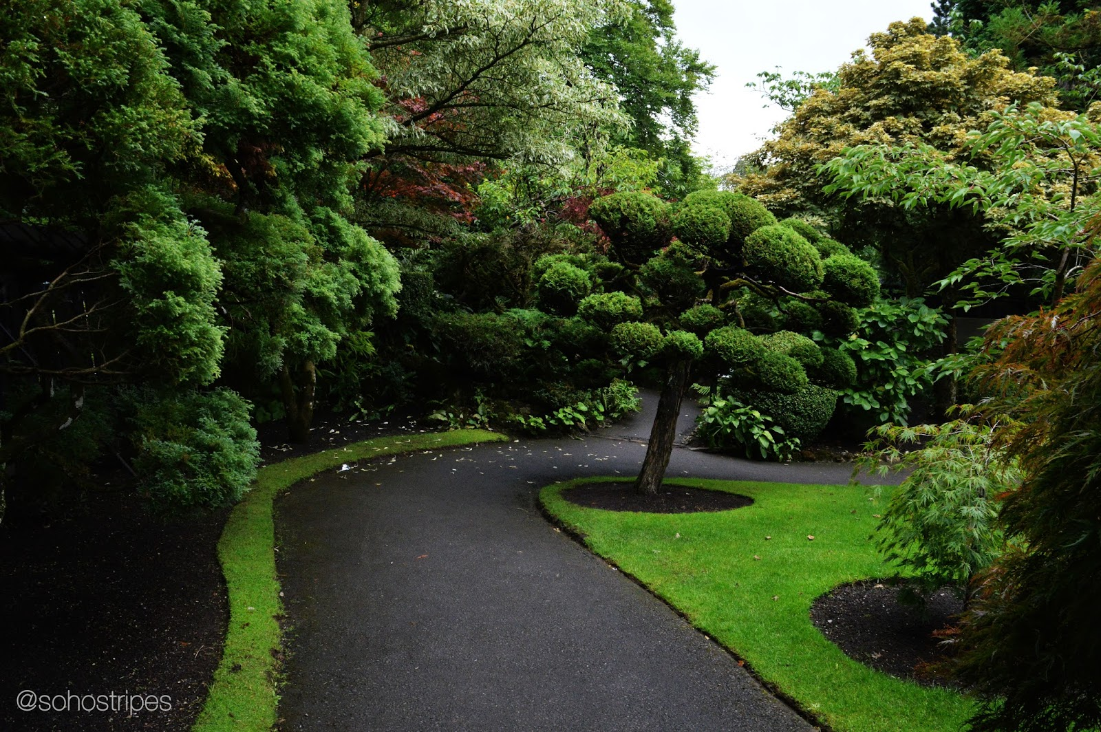 Irish National Stud - Japanese Garden