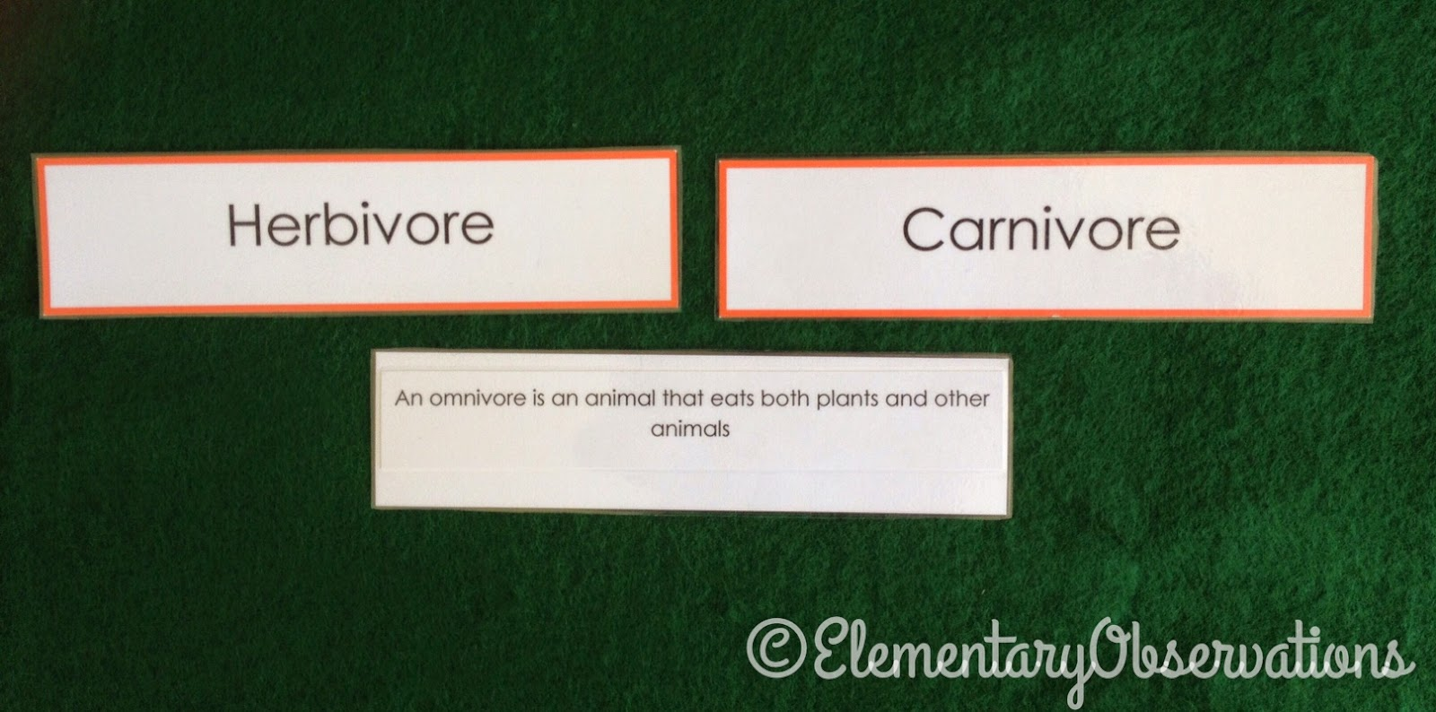 Elementary Observations Herbivore Carnivore Omnivore Sorting