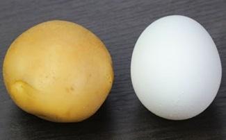 Breakfast Recipes   Breakfast Ideas with Eggs