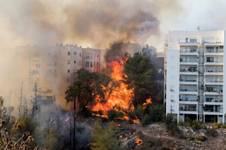 Bushfires In Israeli City Of Haifa Cause Thousands To Flee City Over 'Terrorist' Attack