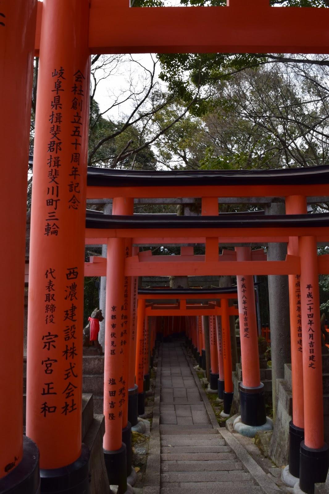 torii path fushimi Inari Taisha
