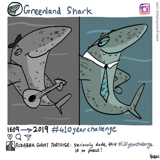 Greenland Shark 410 Year Challenge
