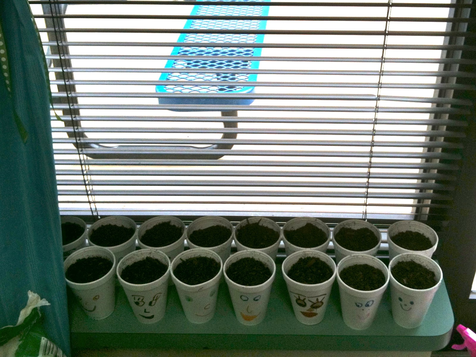 Kindergarten Superkids Plants Amp Freebies