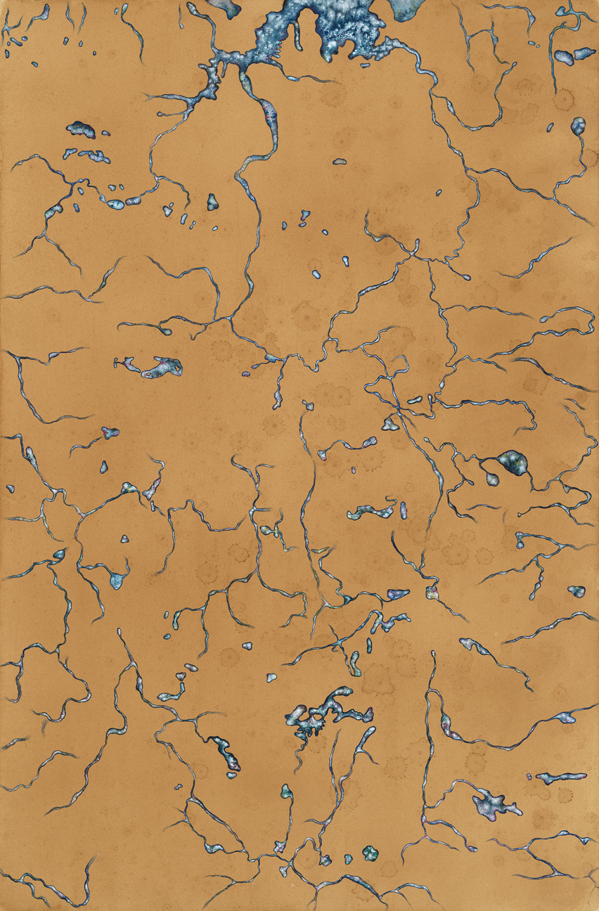 ma the norman b leventhal map education center has featured naoe suzuki in a new show that explores maps as art in crossing boundaries art maps