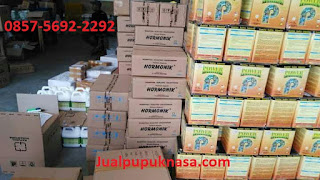Kandungan Unsur Power Nutrition Nasa