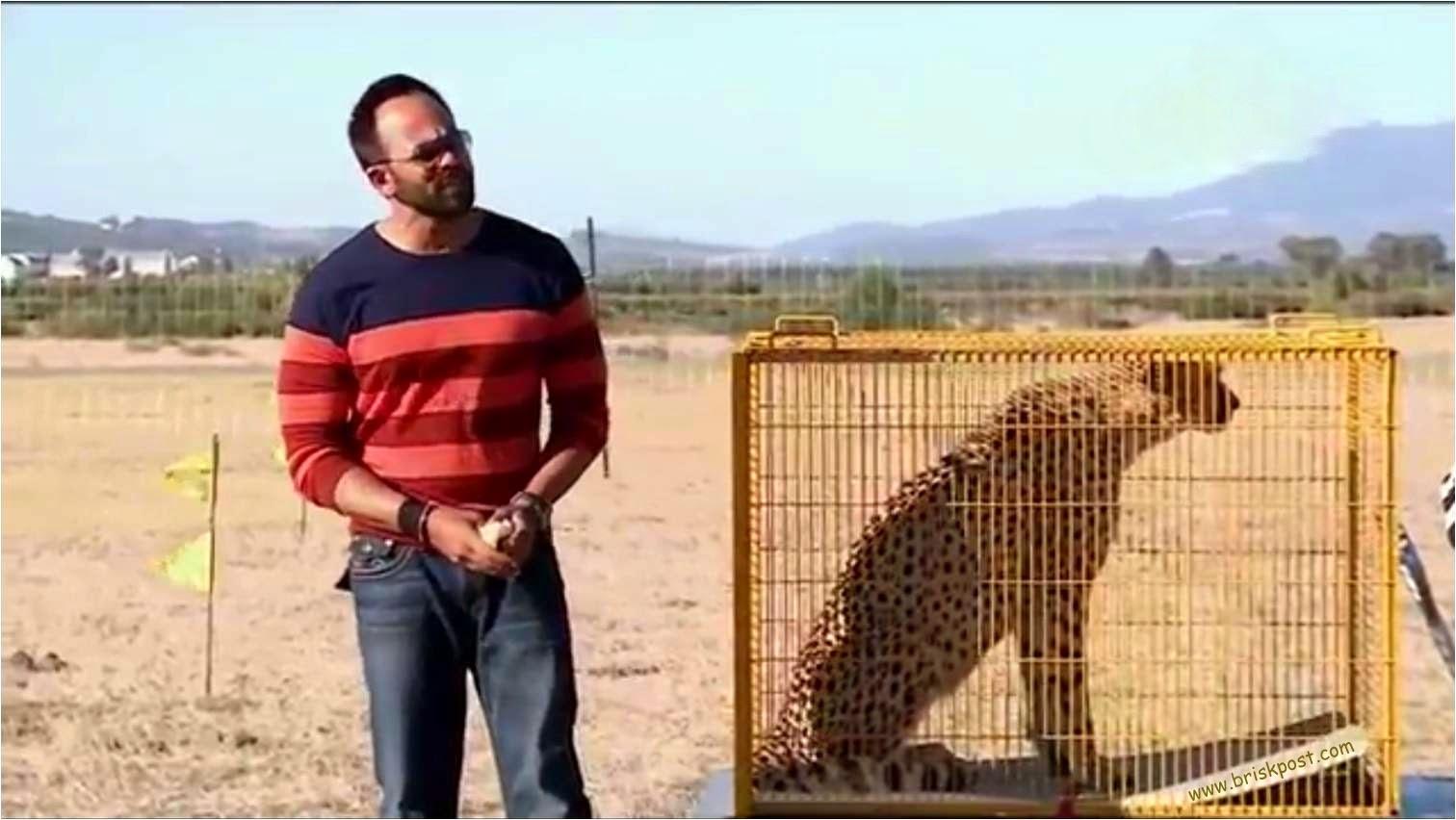 Rohit Shetty with tiget in cage at Khatron Ke Khiladi show