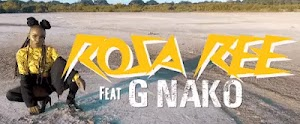 Download Video | Rosa Ree ft G Nako - Dip In Whine