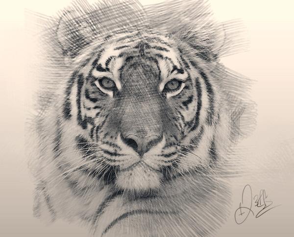 Фото в карандашный рисунок в Фотошопе
