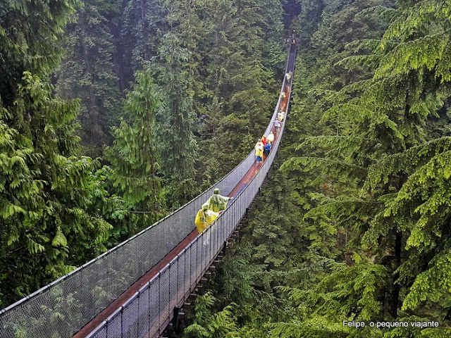 Capilano_Suspension_Bridge_Park_Vancouver_Canada