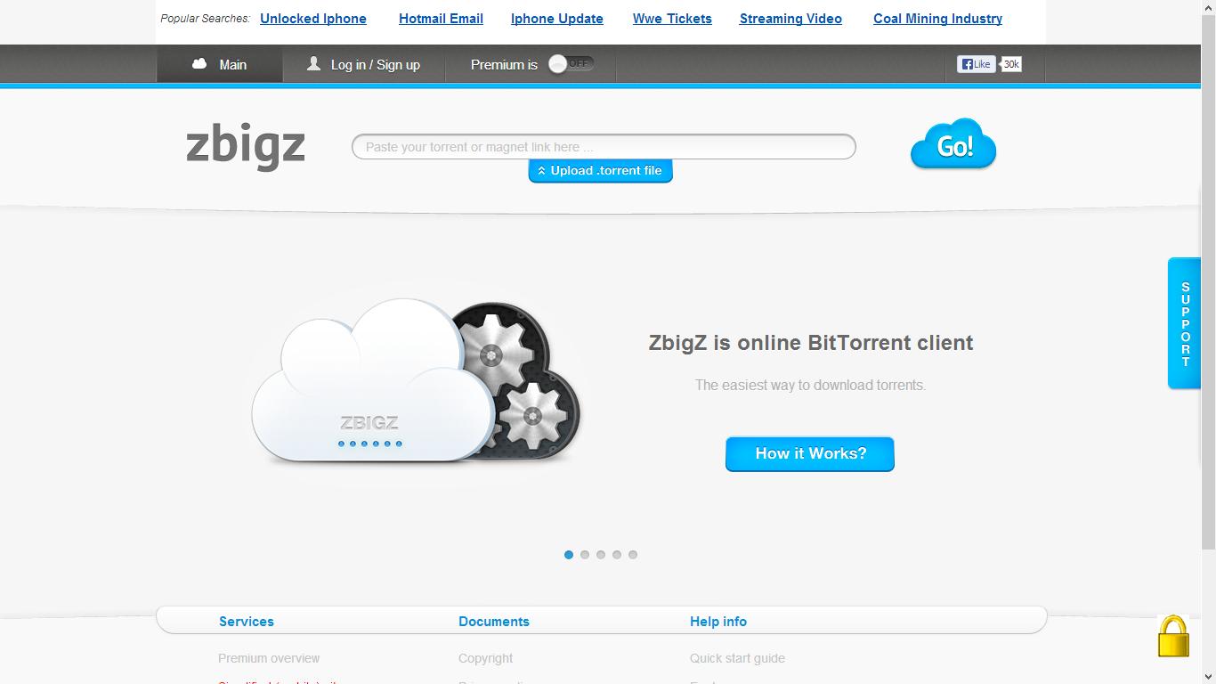 direct download torrents using idm