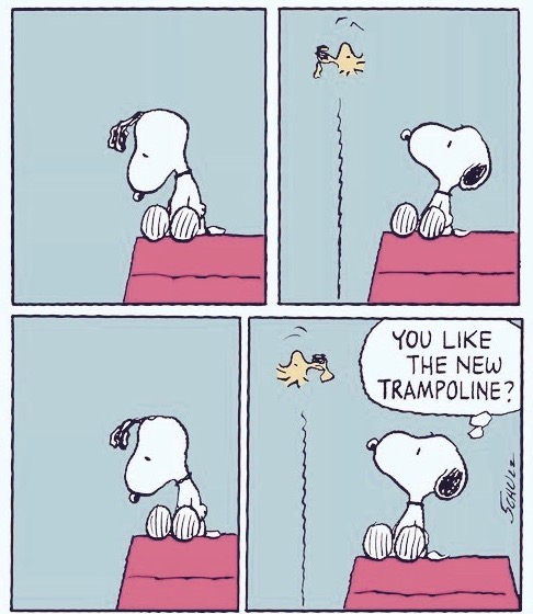 Snoopy on his doghouse, watches Woodstock go up and down. You like the new trampoline. Does sighing count as exercise?.jpg