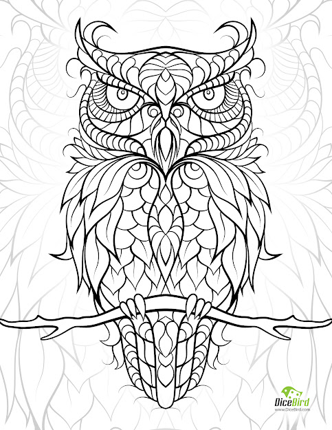 Owl Adult Coloring Book