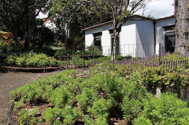 gardens of the Quinta das Cruzes Museum