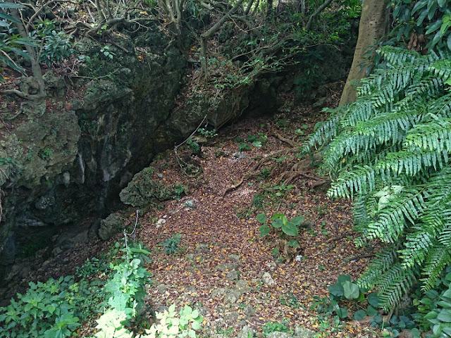 伊原第一外科壕(アブチラ壕)の写真