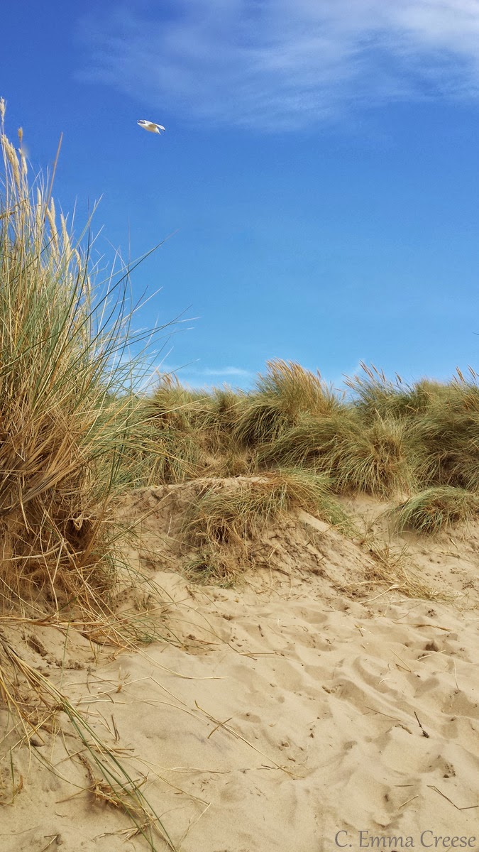 The seven (ok, one) seas of Rye, an August bank holiday beach trip