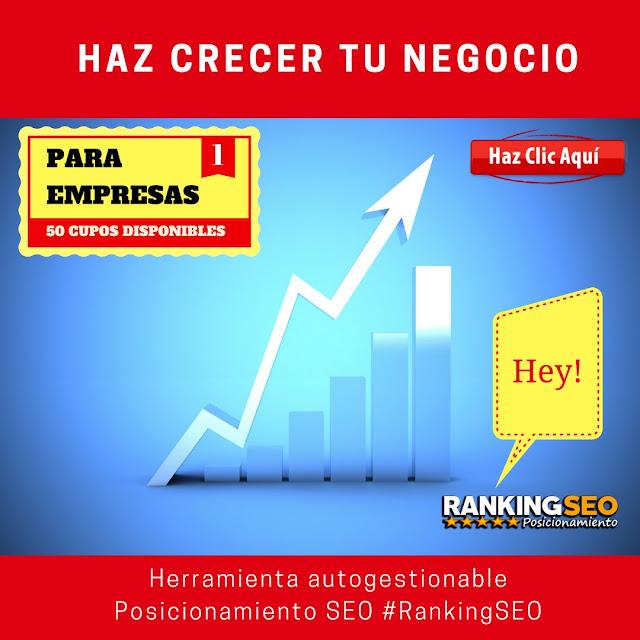 Haz crecer tu negocio en la web con Ranking SEO autogestionado