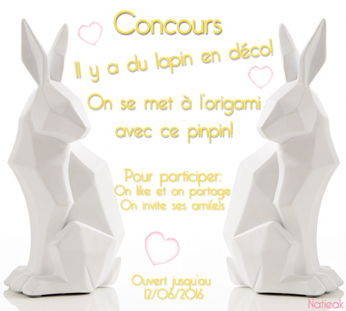 lapin  origami  de  Becquet