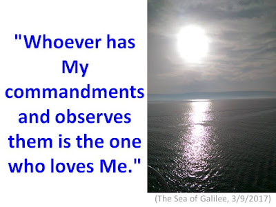 http://faithfulinthe8th.blogspot.com/2017/05/whoever-has-my-commandments-and.html