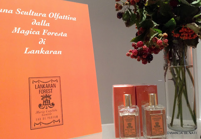 Lankaran Forest di Maria Candida Gentile