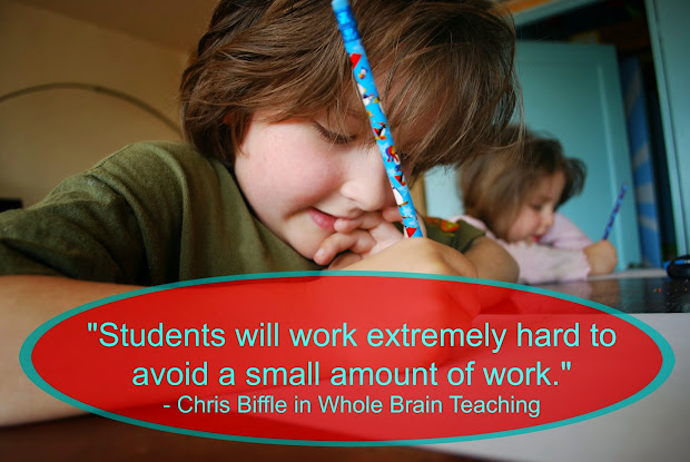 Whole brain teaching book