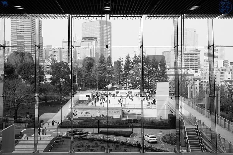 Contemplation de Roppongi - Tokyo - Séjour au Japon - Le Chameau Bleu