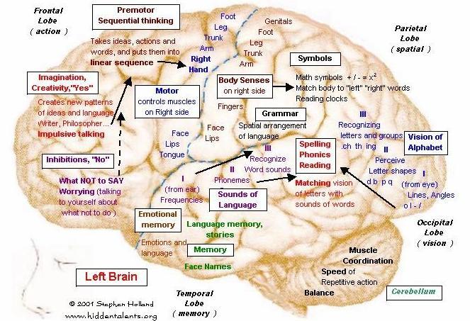 The Triggers of My Inner Mind: flirting n brain tumor