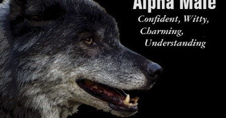 Understanding the alpha male