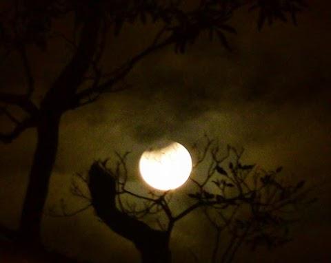 Eclipse de Luna en Acuario