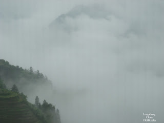 fog on rice terraces, Longsheng, China