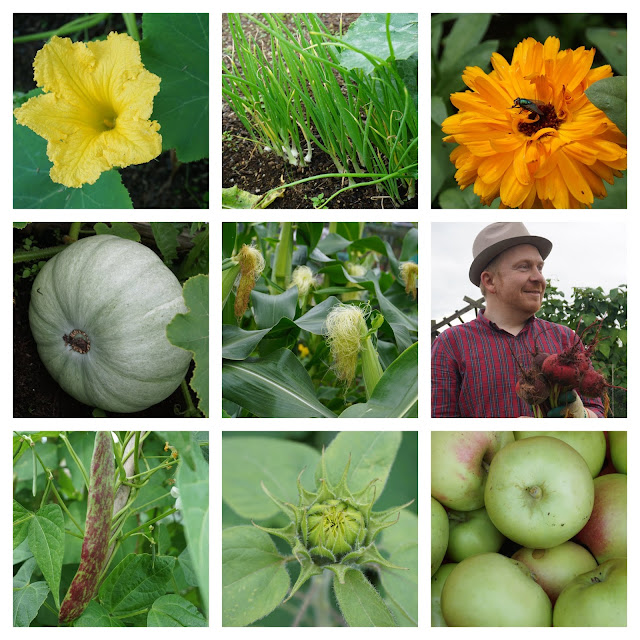 collage of allotment produce and flowers - Carrie Gault 2018
