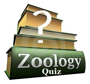 Biology General Knowledge Quiz No.-01 [जीव विज्ञान प्रश्नोत्तरी क्रमांक-01] Biology Gk In Hindi Quiz -01] Biology Quiz in Hindi ] Biology Questions and Answers Quiz with Zoology Quiz, Chemistry Questions and Answers Quiz, Free Gk in Hindi, Biology Study Guide, Solved Question Papers in Hindi, Chemistry Quiz in Hindi & Gk Tricks, Free Online Gk Test Series -01