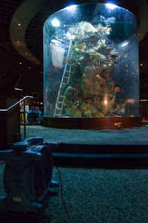 A View From The Beach Exploding Fish Tank Closes Casino