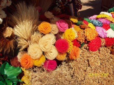 Flores secas do cerrado - Brasília - DF