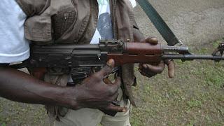 Horror as Gunmen Attack Fulani Community in Niger State, Kill Three Children