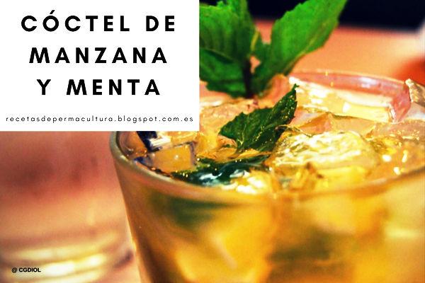 Receta de Coctel de Manzana y Menta, refrescante, saludable para esos días calurosos de verano