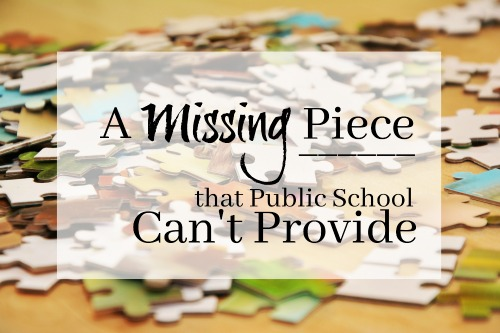 A Missing Piece that the Public School Can't Provide